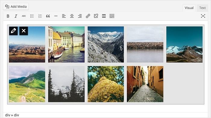 miniatures images galerie WordPress