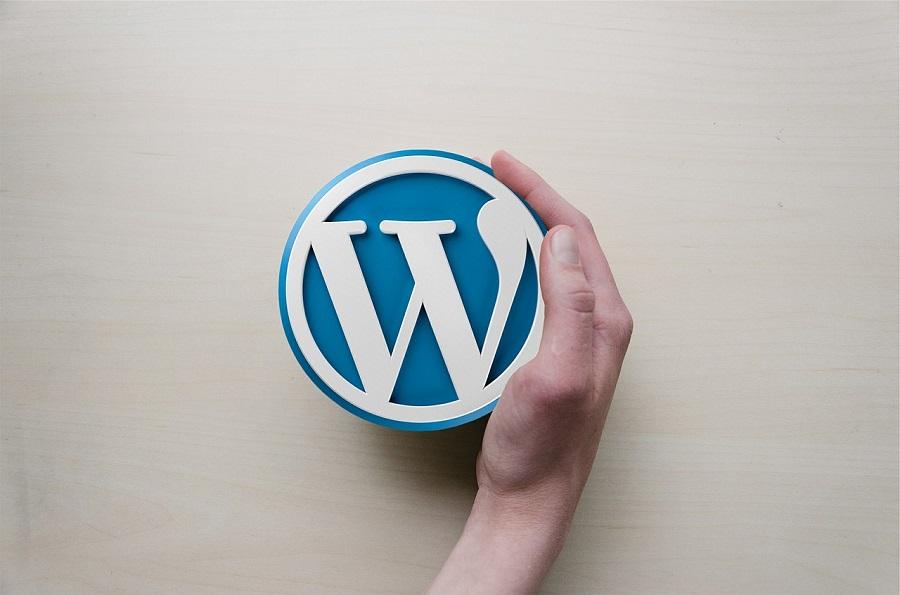 Infographie : l'année 2015 de WordPress