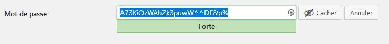 Générateur mot de passe WordPress